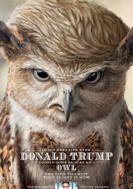 Top Magazine - Donald Trump