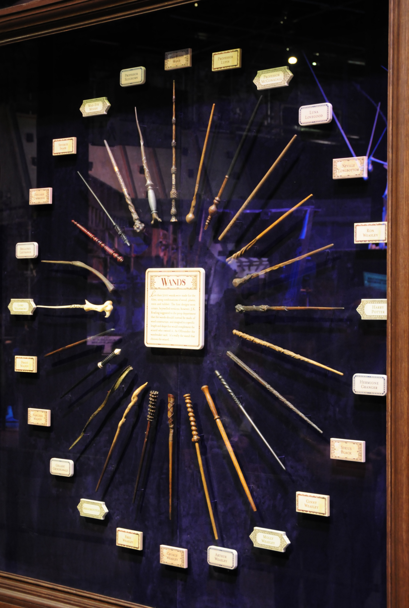 Harry Potter Display Harry Potter Magic Wands In Display Case Harry Potter