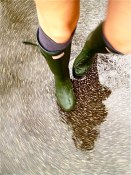 Puddle day | Strathcona