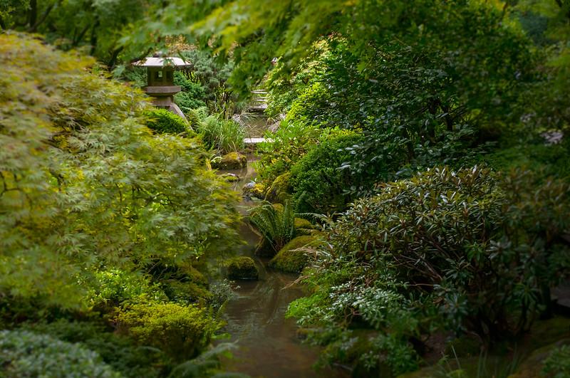 Portland Japanese Garden-3