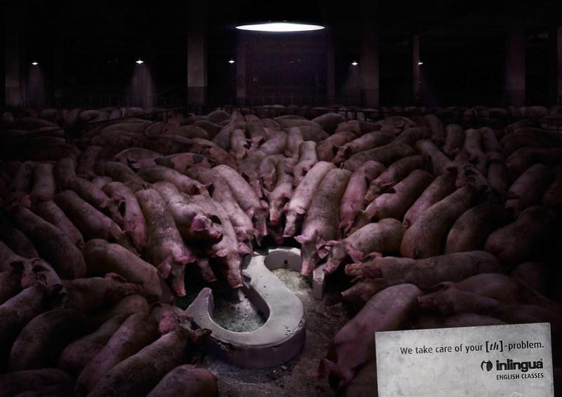 Inlingua - S 3 Pigs