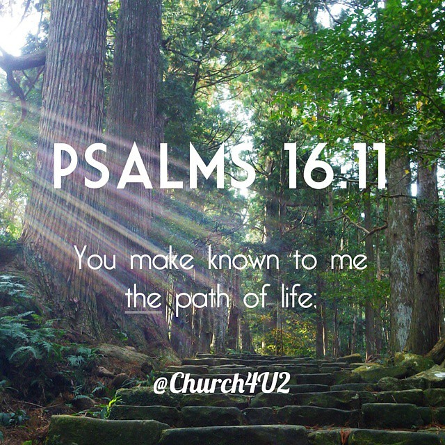Wallpaper Quotes For Computer Psalms 16 11 Quot You Make Known To Me The Path Of Life Quot
