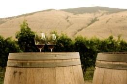 ET2Media Photo of wine glasses and barrel in Orofino Vineyard