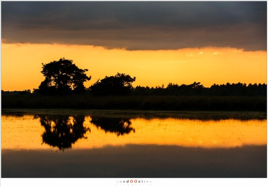 Een prachtige symmetrie in licht en silhouet