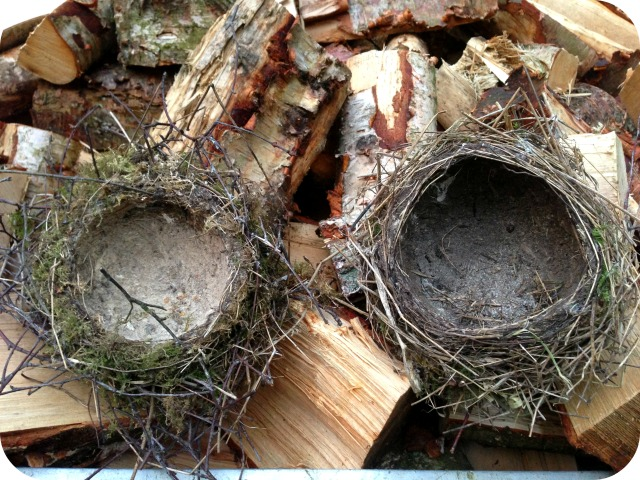 Left: thrush nest Right: blackbrid nest