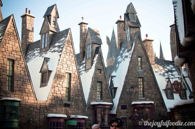 Harry Potter World Rooftops 2