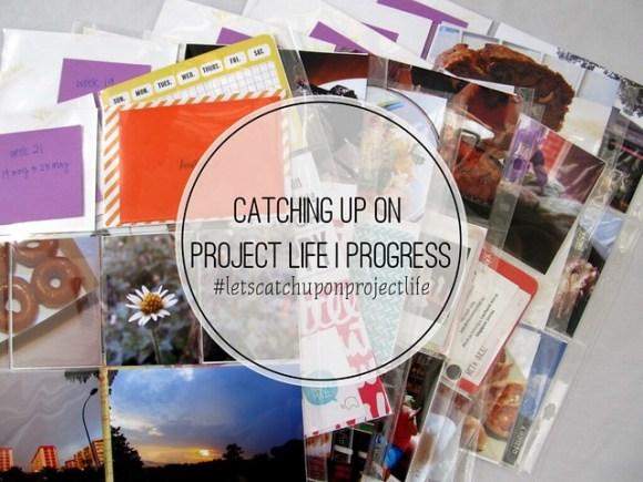 PLcatchupinprogress