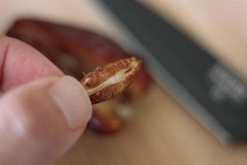 Medjool Date Seed