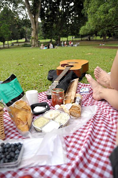 Relaxing picnic