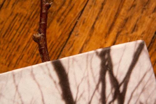 Altered Book-3
