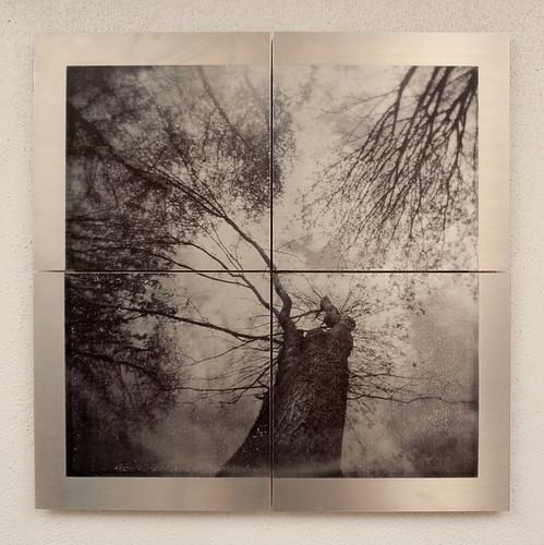 Metal prints-3