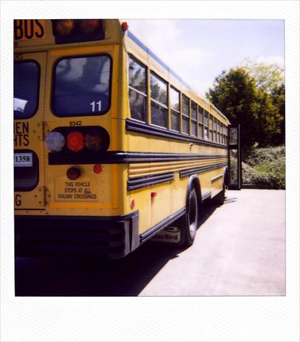 School bus 11