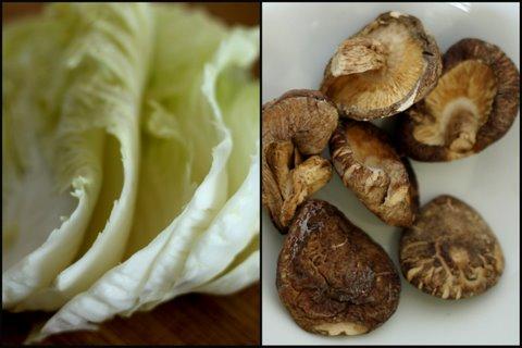 napa cabbage rolls