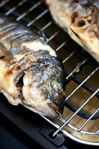 Grilled fish in Puglia