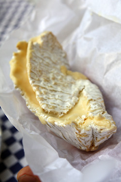 coulommiers cheese