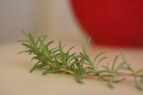 Rosemary from the garden