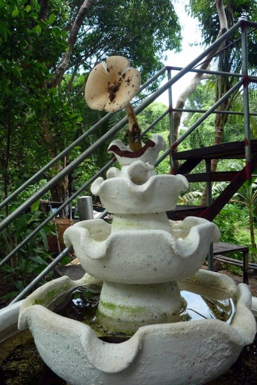 La Union Botanical Garden (60)