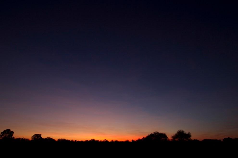 Las primeras horas del alba en un descampado a la vera del camino, en Paso de los Pioneros. (Tetsu Espósito - Paso Los Pioneros, Chaco, Paraguay)