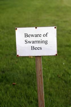 beware of swarming bees