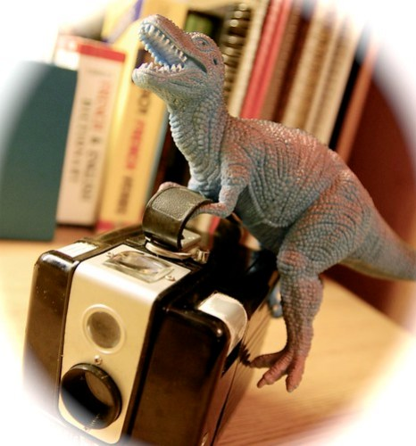 Brownie Hawkeye + Dinosaur