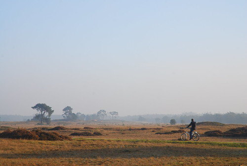 cycling in the Veluwe