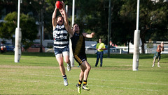 Balmain Tigers v Camden Cats AFL Division1 May 27 2017 00057