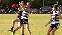 Balmain Tigers v Camden Cats AFL Division1 May 27 2017 00069