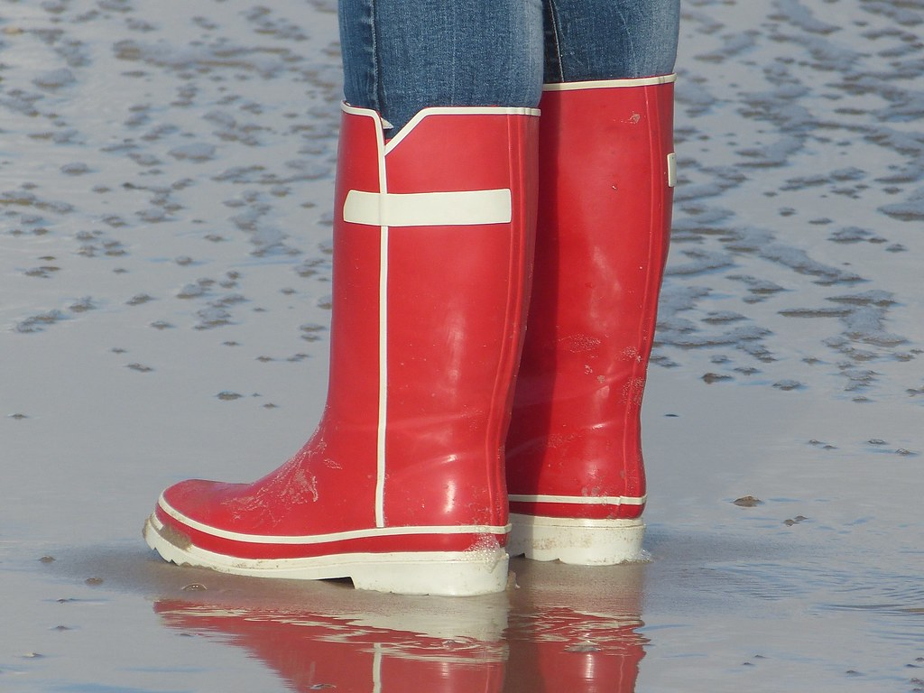 La Chambre Wellington Boots The World S Newest Photos Of Gummistövlar And Rubberboots Flickr