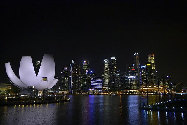Write About Singapore _ Singapore Night skyline