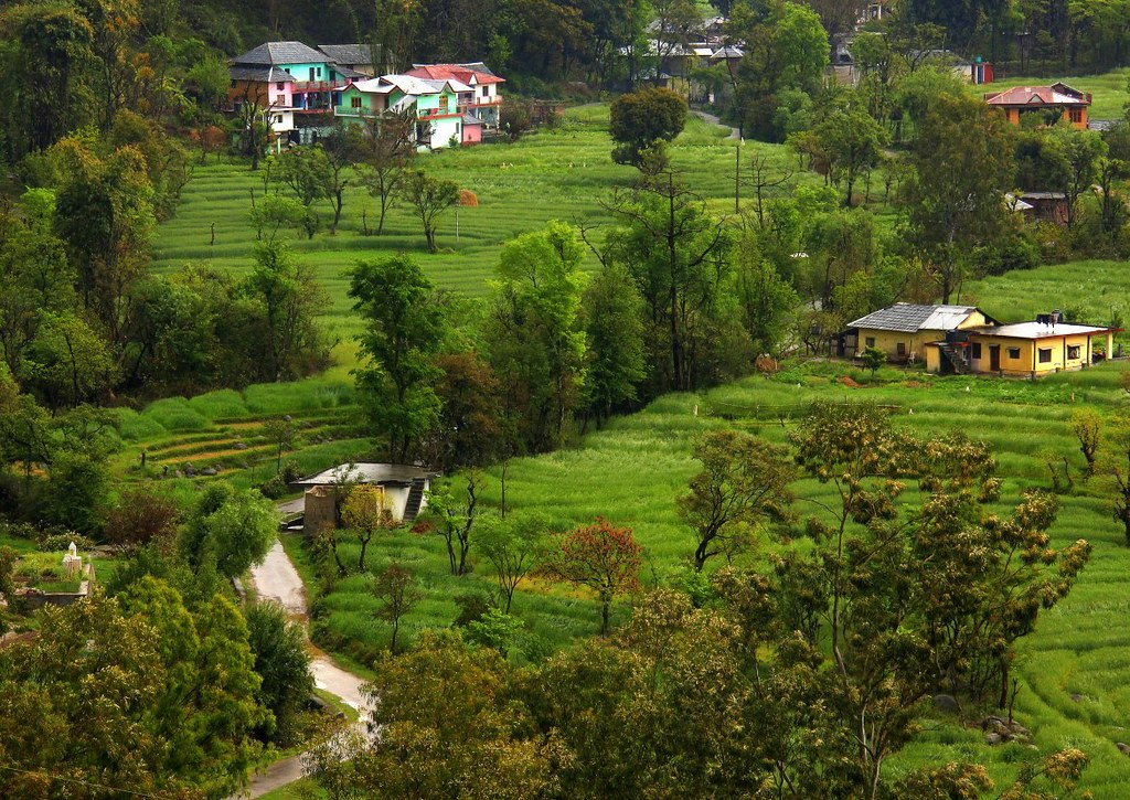 The quiet and green Dharamkot trip is relaxing for mind, body and soul