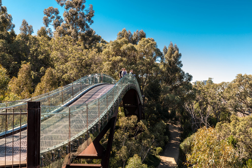Gone Travelling Blog Australia – Kings Park Botanical Gardens – Neil Baldwin 39;s