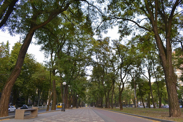 A Weekend in Dnipro Ukraine _ Leafy Boulevards