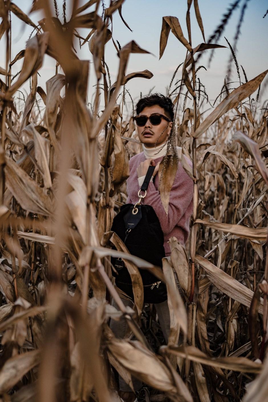 corn_field-8