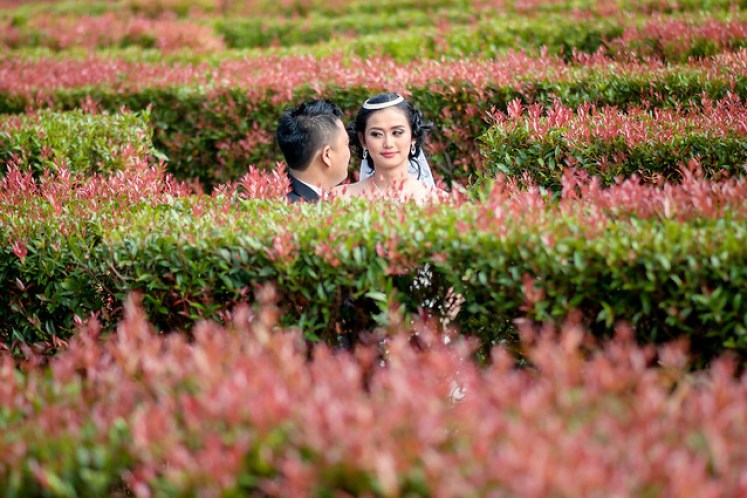 gofotovideo prewedding taman bunga nusantara TBN cianjur 0448