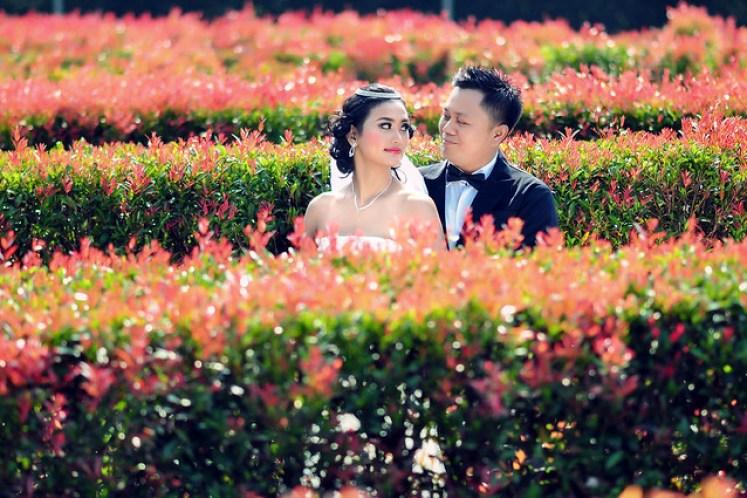 gofotovideo prewedding taman bunga nusantara TBN cianjur 0454