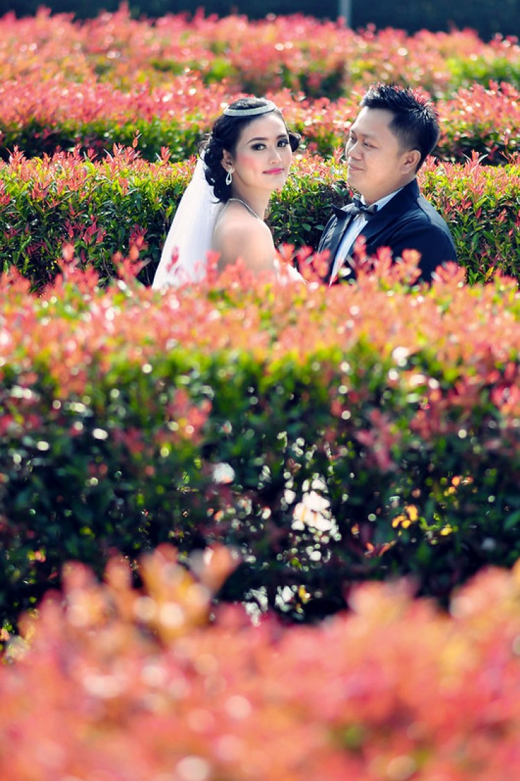 gofotovideo prewedding taman bunga nusantara TBN cianjur 0453