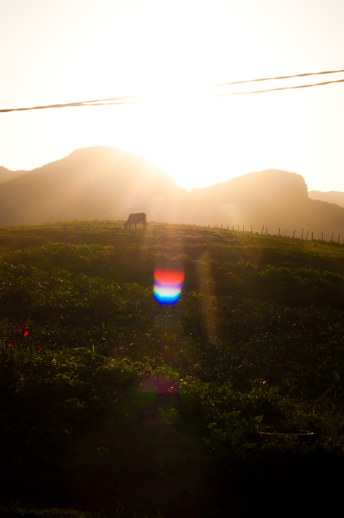 Golden hour in Vinales, Cuba
