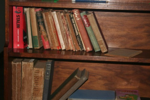 Bookcase at Cape MacLear