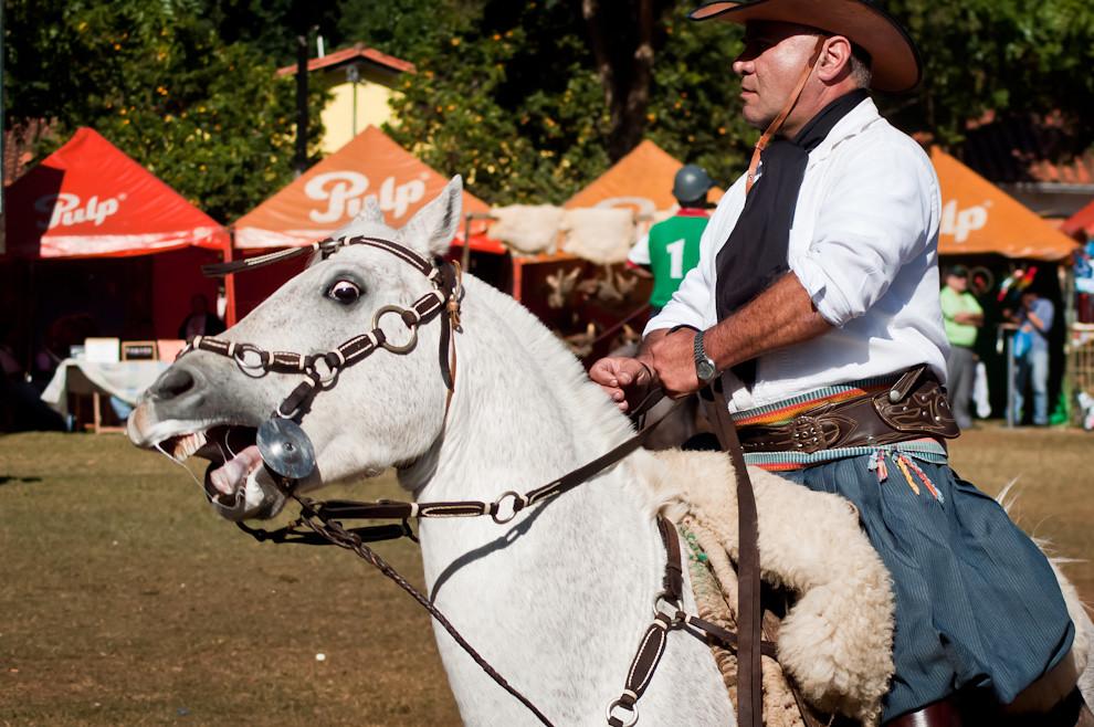 Un jinete monta su caballo y exhibe su talento en la parte central de la plaza de San Miguel. Fuimos testigos de espectaculares demostraciones de habilidad y dominio del caballo en cualquier situación, y grandes y arriesgadas maniobras llevadas a cabo con un casi imperceptible tirón de riendas. (Elton Núñez, San Miguel - Paraguay)