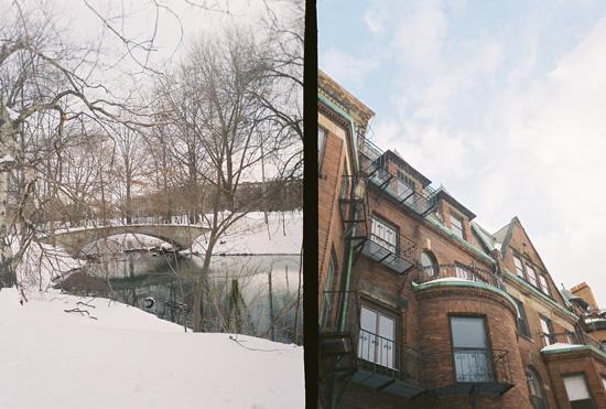 Golden Half: Winter