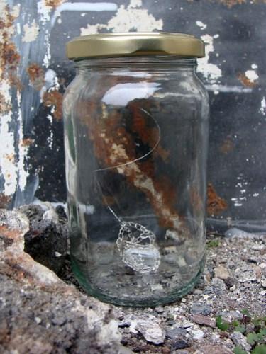 Jar No 31