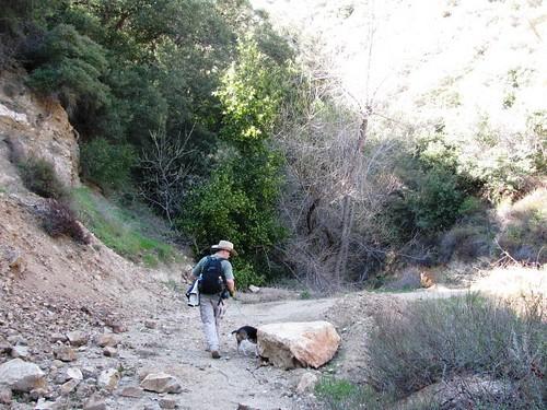 Road to Nowhere Hike