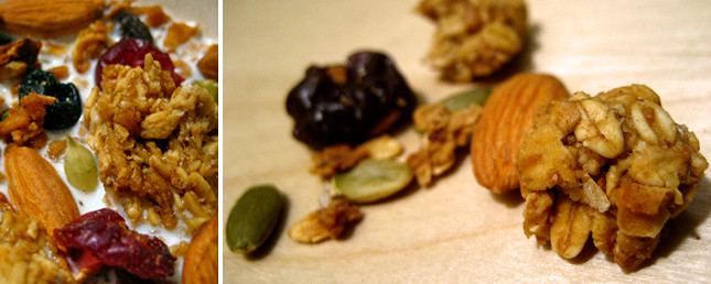 homemade almond and dried fruit granola