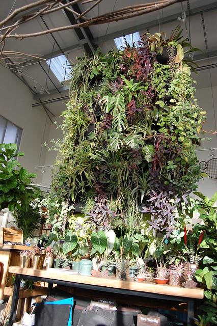 Flora Grubb Vertical Wall