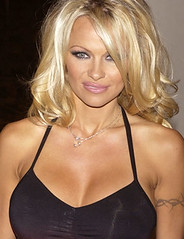 Pamela Anderson: Icono sexual de Estados Unidos