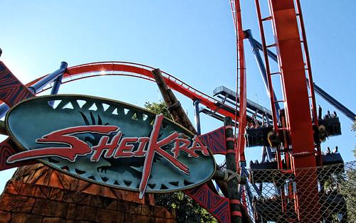Sheikra in Busch Gardens, Tampa, FL