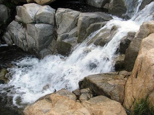 Ortega Falls 3-12-11
