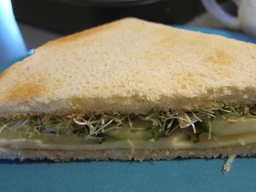 Havarti, Cucumber & Sprouts