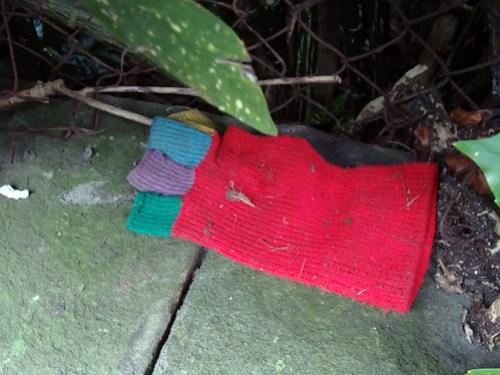 Colourful lost glove