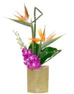 Hawaiian Tropical — Leanne and David Kesler, Floral Design Institute, Inc., in Portland, Ore.